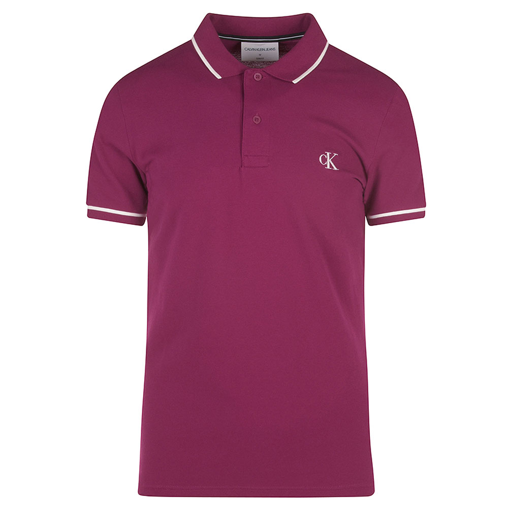 Tipping Polo Shirt in Purple