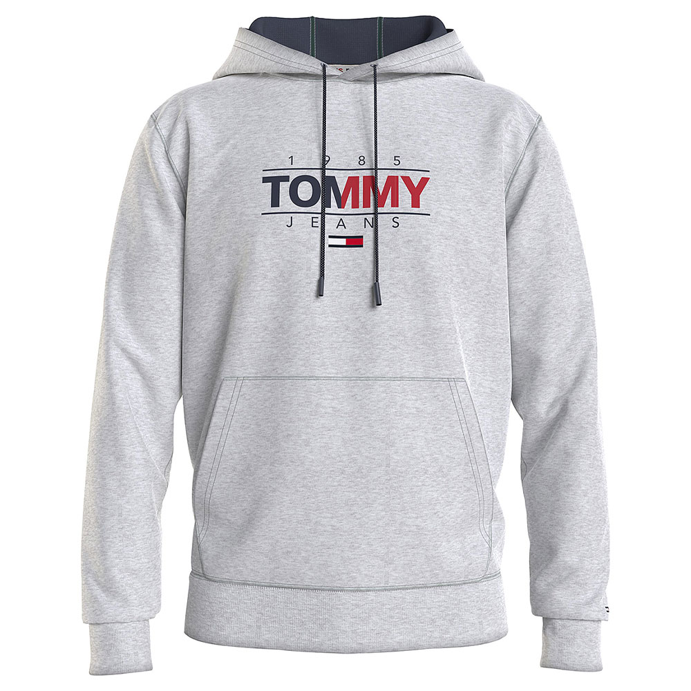 Essential Graphic Hoodie in Silver